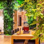 Mur végétal et fontaine à boisson détox' dans la réception du Green des Impressionnistes