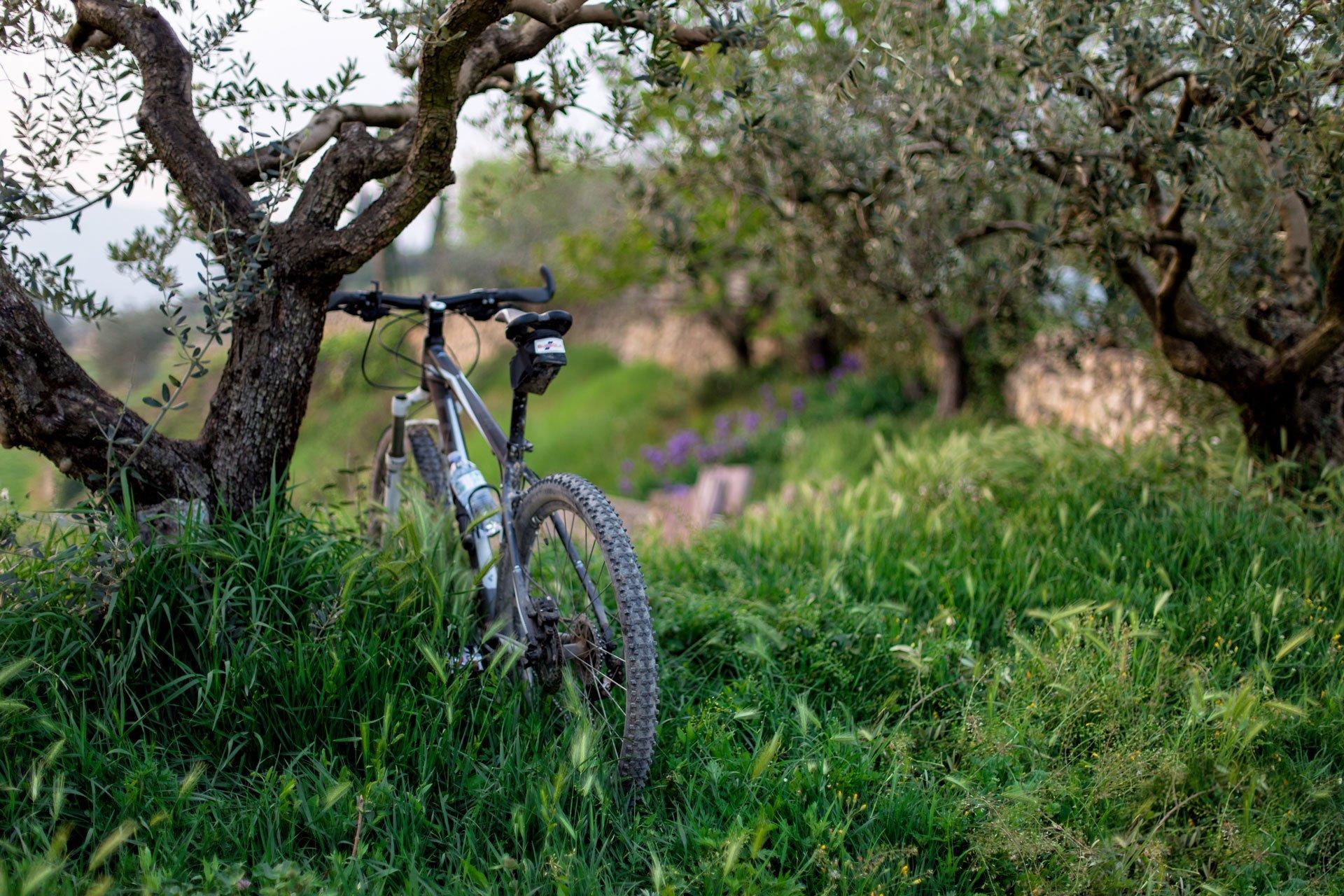 Vélo en balade dans les environs du Green des Impressionnistes