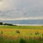 Vue sur les champs proches du Green des Impressionnistes, qui ont inspiré les peintres Impressionnistes