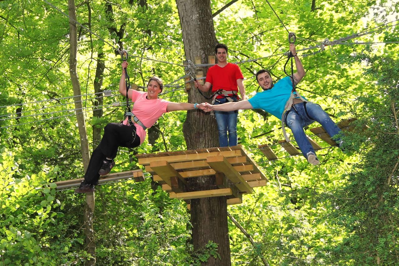 Personnes s'amusant, accrochées dans les arbres